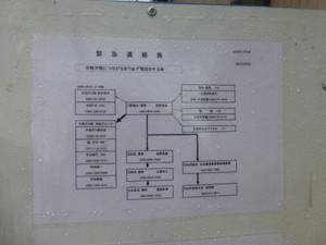 P1130847s